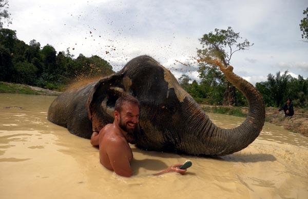 koh-lanta-elephant-2-sp-utazas